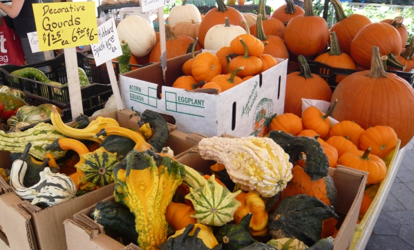 nadya-farmers-market-1.JPG.jpeg
